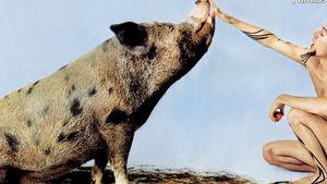 """Thomas D. sagt seinem Mastschwein """"Erika"""" ade"""