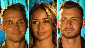 Vor dem Finale: Wem gönnen Tobi, Nathalia und Luca den Sieg?