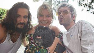 Für Schwägerin Heidi: Bill Kaulitz schmiss Geburtstagsbrunch