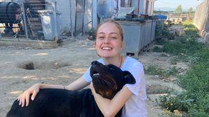 Tierheimbau für Hunde: Tamkans starten Mega-Spendenaktion!