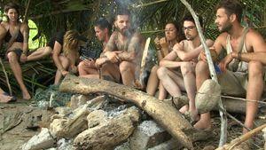 """Neues Format: """"Wild Island"""" bringt Teilnehmer an ihre Grenze"""