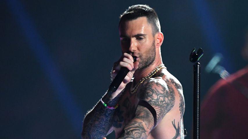 """""""Alle eifersüchtig"""": Adam Levine sind die Hater egal"""