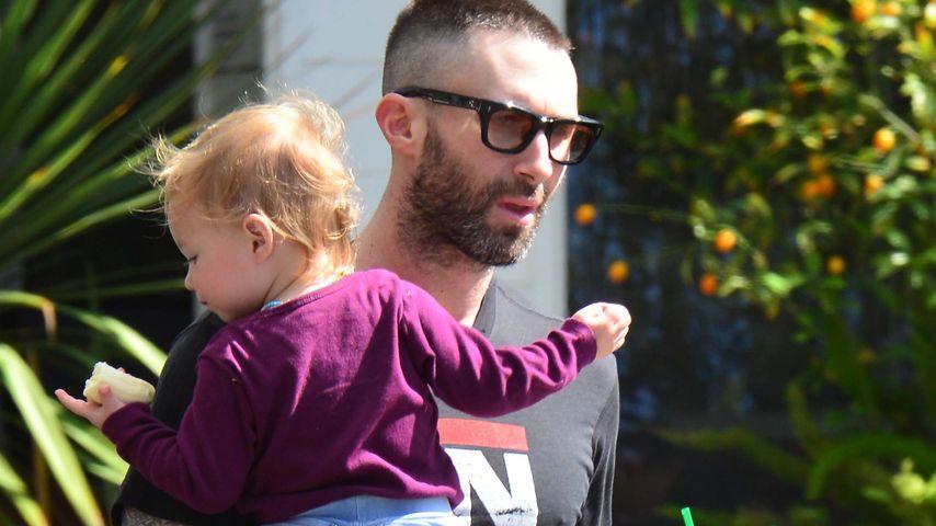 """Nach """"The Voice"""": Adam Levine ist jetzt ein Hausmann!"""