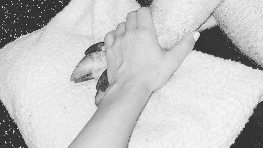 Alexa Bliss mit ihrem Hausschwein Larry-Steve