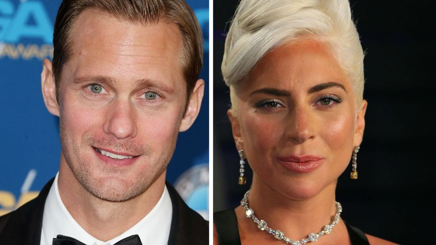 Verrückt: Alexander Skarsgard kannte Lady Gaga gar nicht!