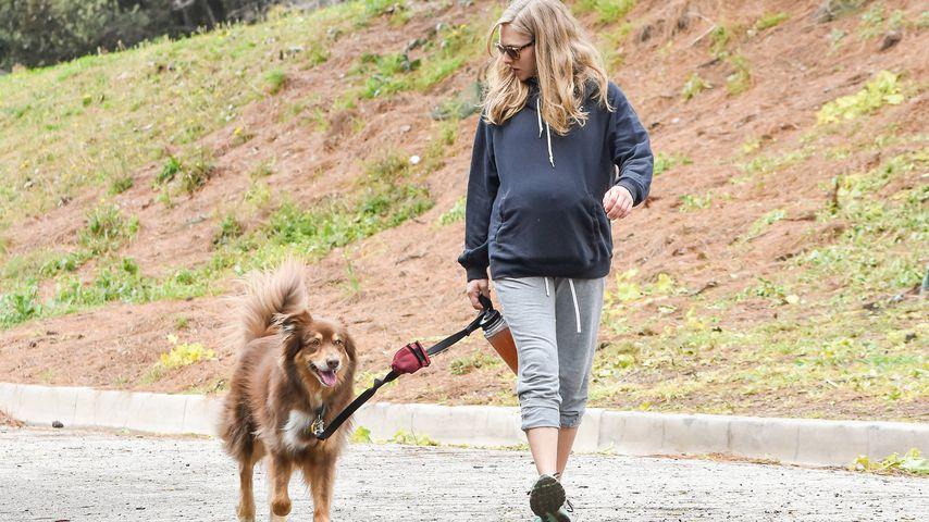 Amanda Seyfried mit ihrem Hund Finn in Los Angeles