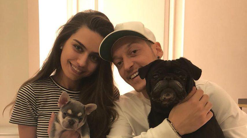 Noch wenige Wochen: Heiratet Mesut Özil dann seine Amine?