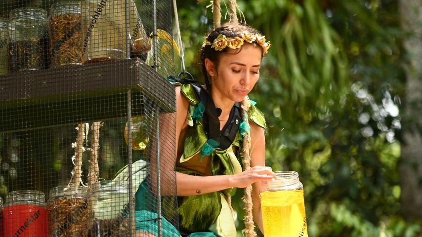 Anastasiya Avilova an Tag 11 im Dschungelcamp
