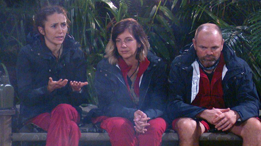 Anastasiya Avilova, Daniela Büchner und Sven Ottke an Tag 10 im Dschungelcamp