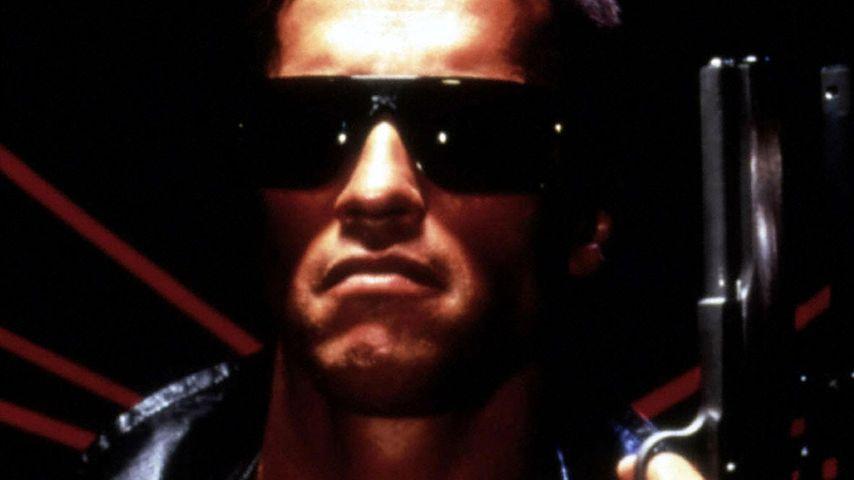 He'll be back! Schwarzenegger auch in Terminator 6