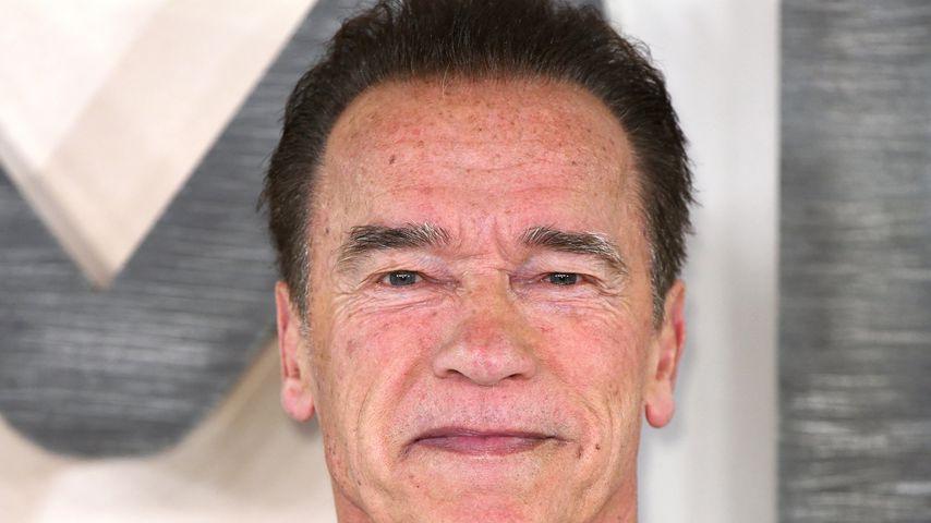 "Arnold Schwarzenegger beim ""Terminator: Dark Fate""-Photocall"