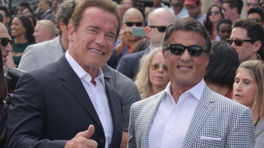 Arnold Schwarzenegger und Sylvester Stallone 2015 auf einer Filmpremiere
