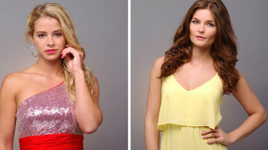 Zicken-Schlacht: Sandra und Saskia fetzen sich um Bachelor