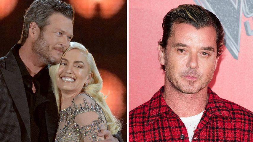 Sorgerechts-Streit mit Gavin: Blake steht Gwen Stefani bei!