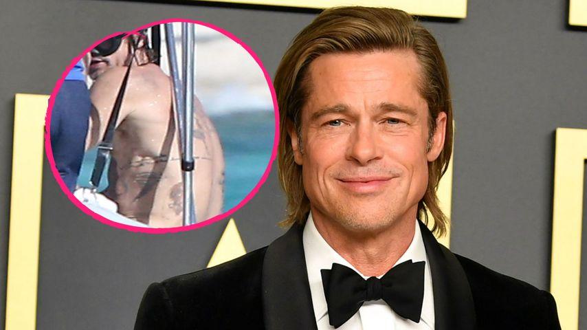 Seltener Anblick: Brad Pitt zeigt seinen tätowierten Rücken