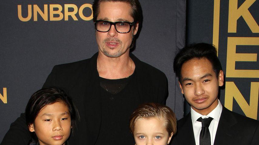 Brad Pitt in Angst: Angelina nimmt Kids mit in Kriegs-Länder