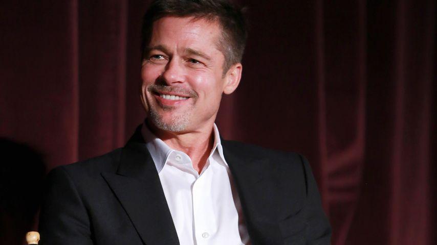 """Brad Pitt beim """"Allied""""-Fan-Event in Los Angeles"""