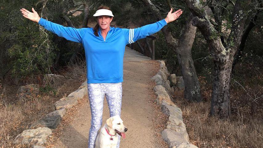 US-Brände: Caitlyn Jenners Welpe wurde aus Haus gesaugt!
