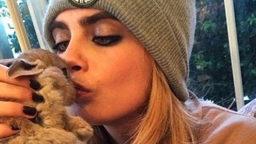 Mitfühlendes Model: Cara Delevingne schützt Tiere