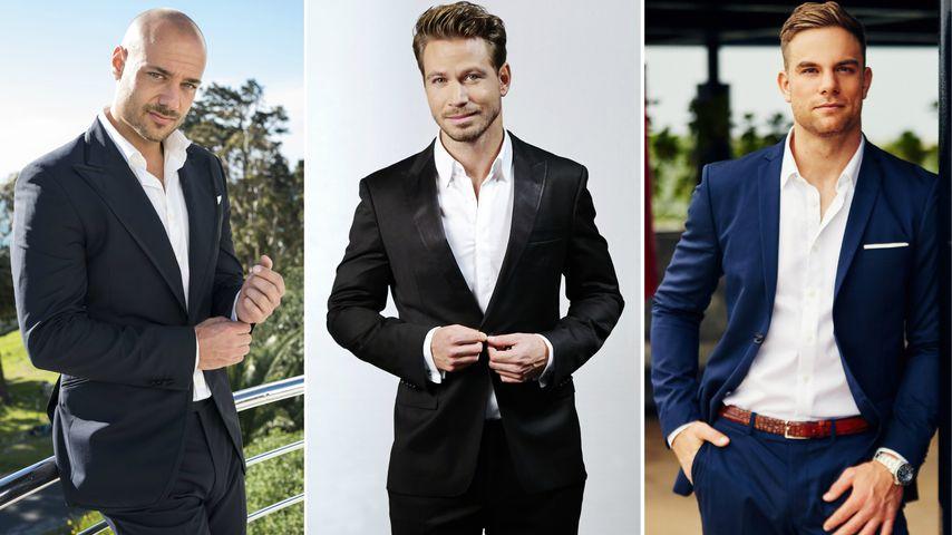 Zehn Staffeln, zehn Bachelor: Wer war der beste Rosenheld?