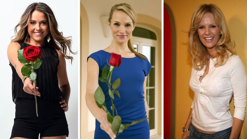 Alisa, Anna oder Monica: Wer war die heißeste Bachelorette?