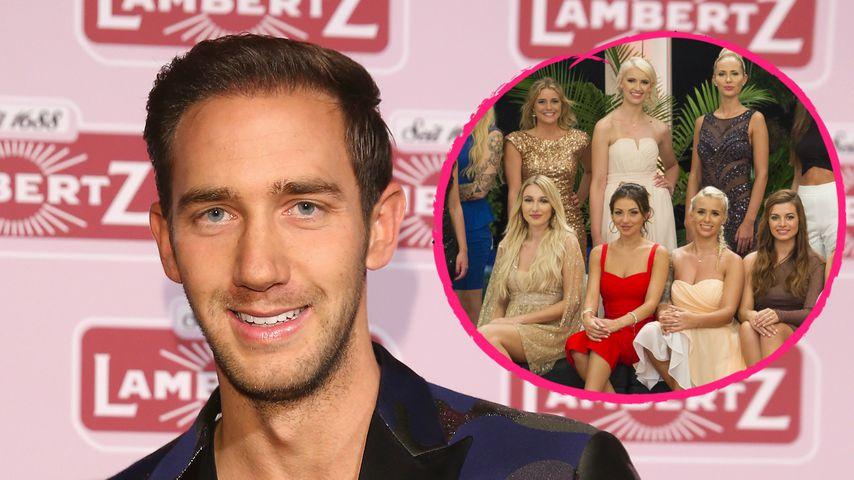 Alles für Ruhm? TV-Makler Marcel Remus disst Bachelor-Girls