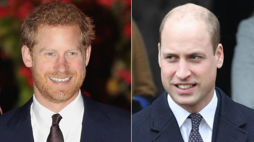 Harry vs. William: Welcher Bruder gewinnt Auftritte-Duell?