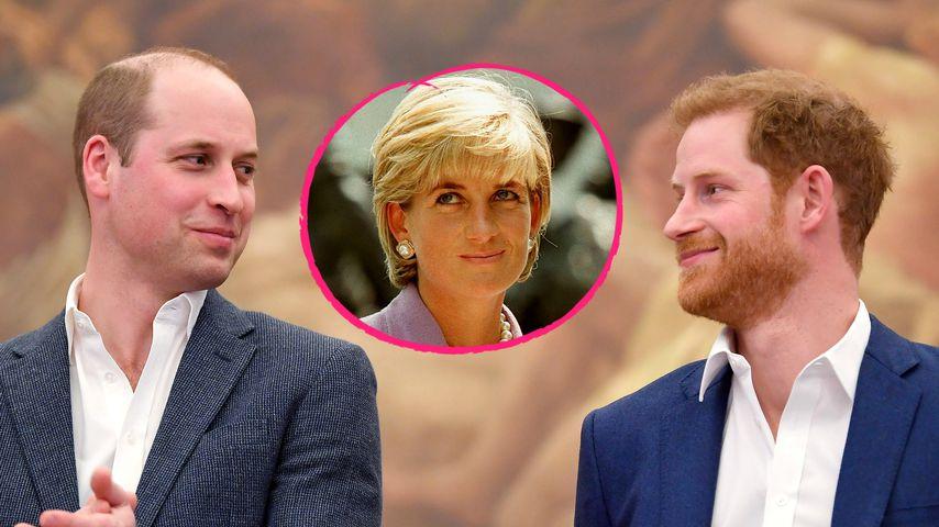 William und Harry geben Update zu Prinzessin-Diana-Denkmal