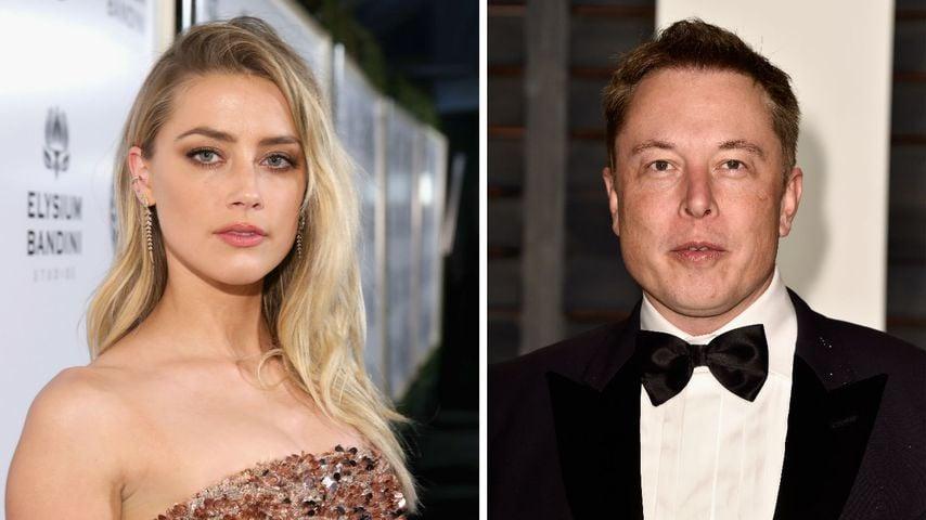 Amber Heard & Elon Musk: Liebescomeback nicht ausgeschlossen