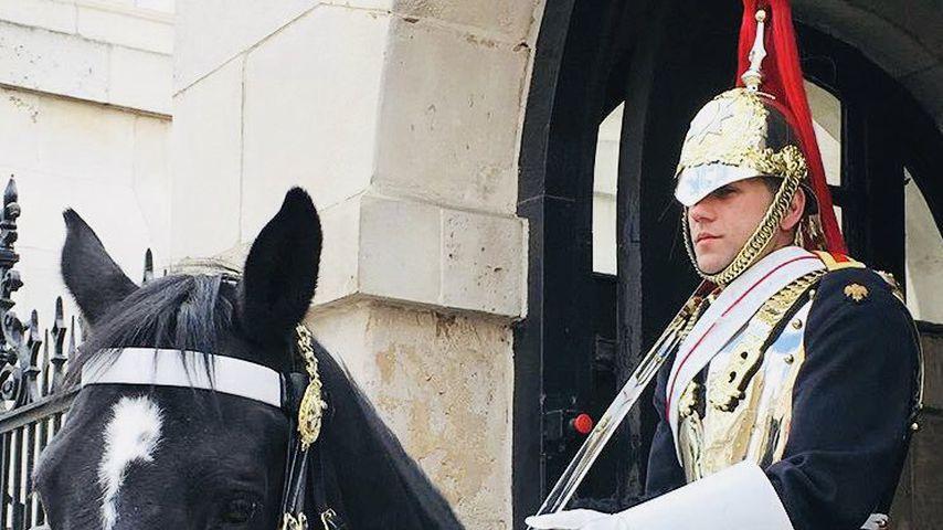 Dan Broughton in der königlichen Garde Großbritanniens