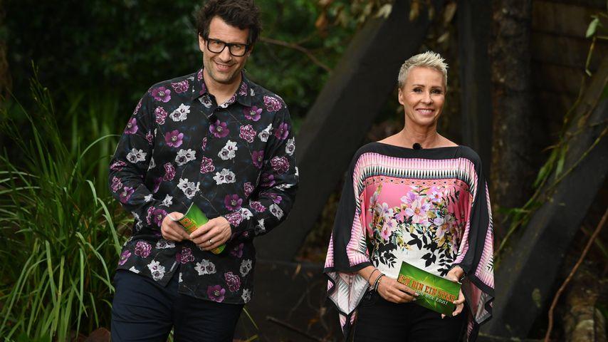 Previous article Dschungelcamp-Absage jetzt spricht RTL! Es kommt eine Dschungel-Show!