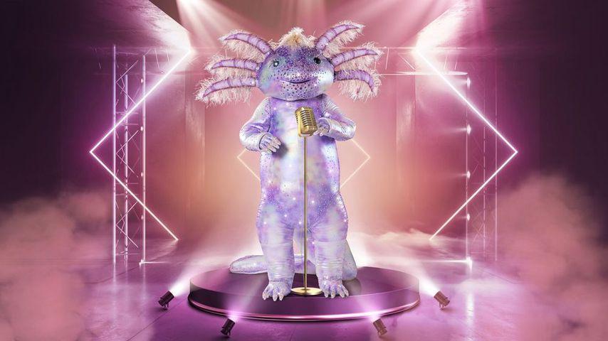 """Lila Axolotl: Das ist die nächste """"The Masked Singer""""-Figur"""