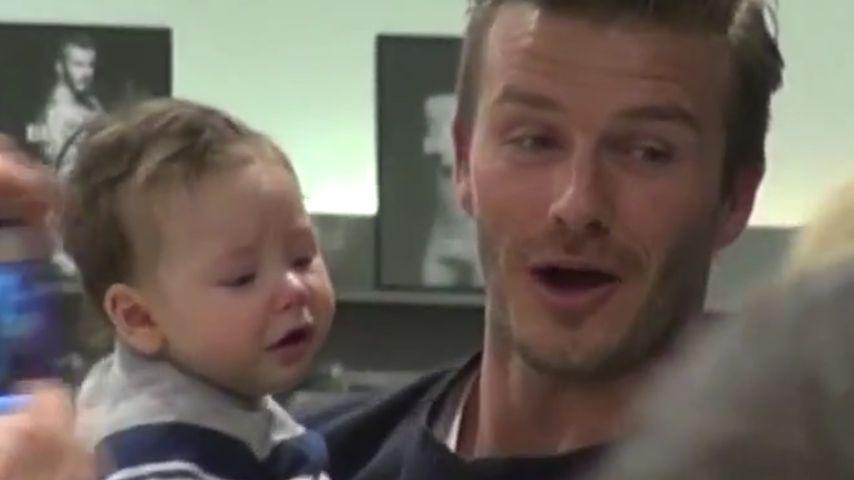 David Beckham: Ist das sein Harper-Ersatzbaby?