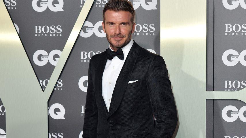 Echt jetzt? David Beckham soll eigene Kochsendung planen!