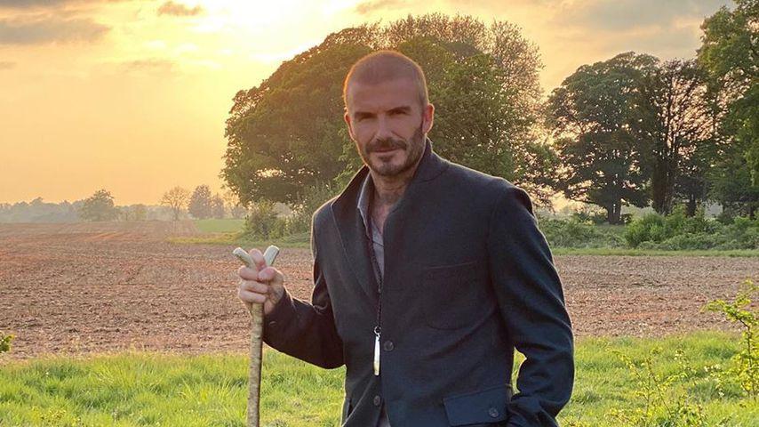David Beckham, Juni 2020