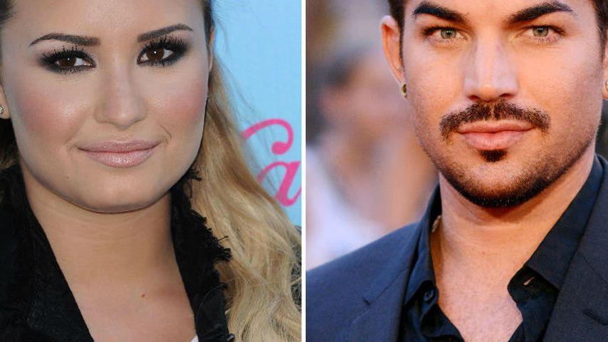 Glee: Demi Lovato & Adam Lambert in Gastrollen!