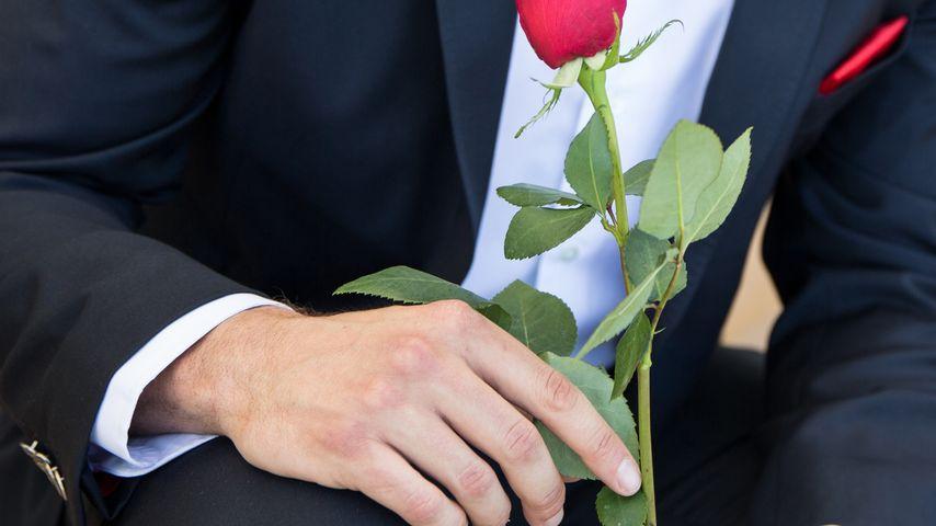 """Rosen-Date steht: """"Bachelor""""-Termin bestätigt!"""
