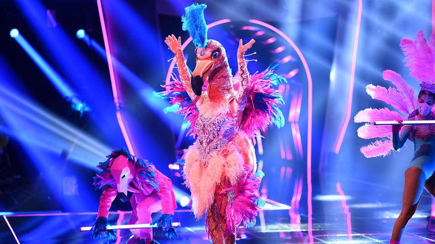 """Der """"The Masked Singer""""-Flamingo"""