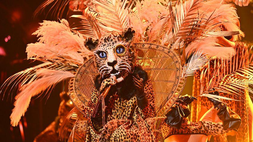 """Der """"The Masked Singer""""-Leopard"""