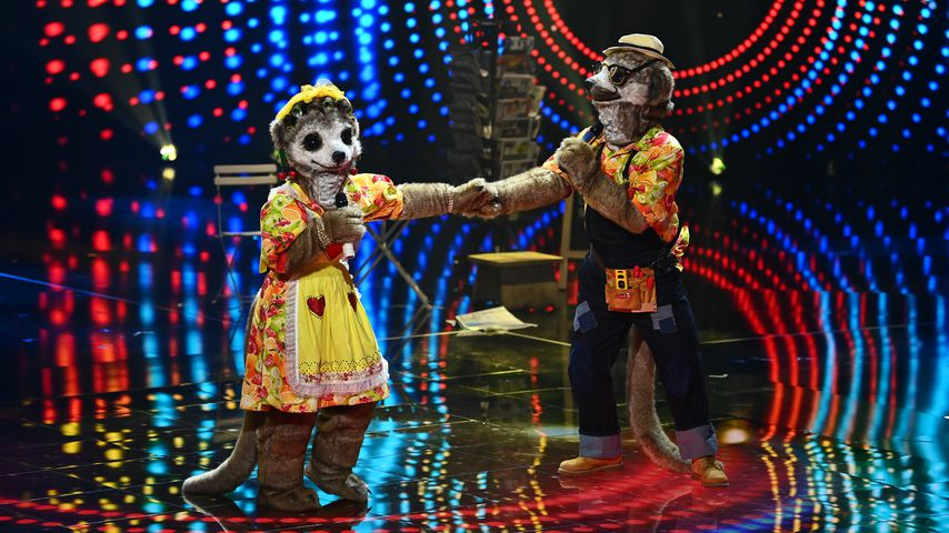 """Die Erdmännchen bei """"The Masked Singer"""""""