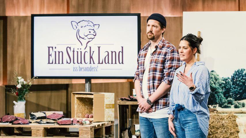 Kein Löwen-Deal für EinStückLand: Woran hat es gelegen?