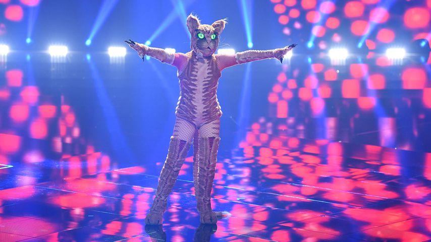 """Die Katze von """"The Masked Singer Austria"""""""