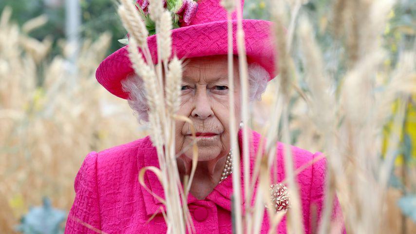 Royaler Schock: 22-Jähriger bricht bei Queen Elizabeth ein!