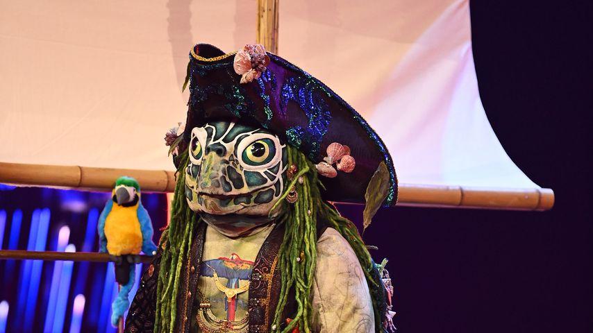 """Die Schildkröte bei """"The Masked Singer"""""""