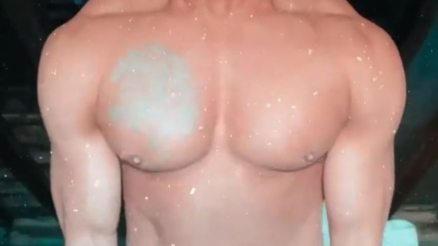 Domenico De Ciccos Brust