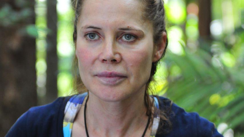 Dschungelcamp 2019: #metoo im Dschungelcamp! Tommi lässt den Lustmolch raushängen