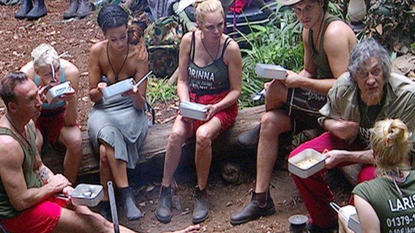 Dschungel-Tag 8: Krönt hier euren Urwald-König!