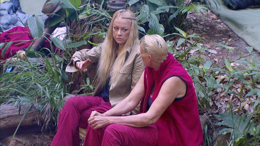 Therapie am Lagerfeuer: Dschungelcamp-Alkoholiker unter sich