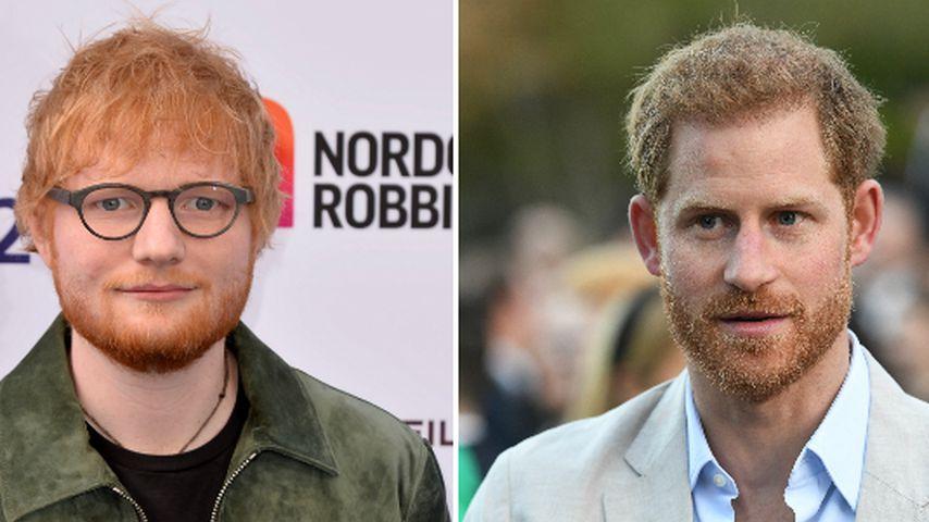 Insta-Clip verwirrt: Warum klingelt Ed Sheeran bei Harry?