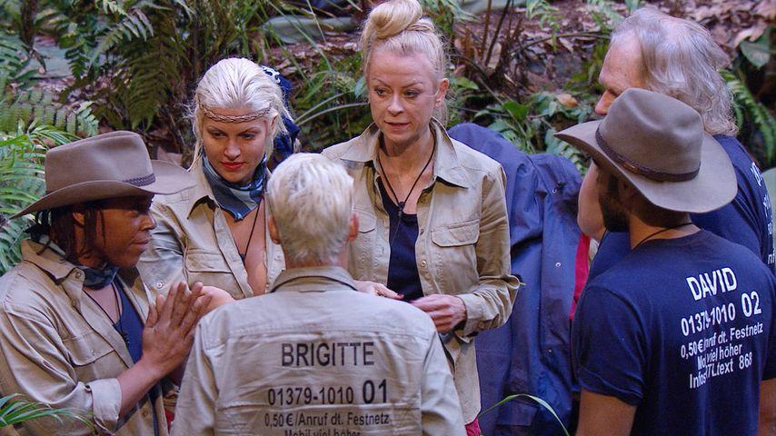 Aus 2 mach 1: Dschungelcamp jetzt langweilig oder spannend?
